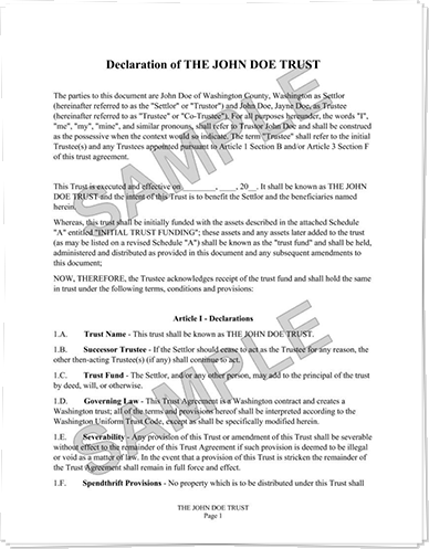 Example NFA Trust Document